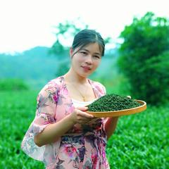 兰花香浓香型安溪铁观音茶叶2020新茶春茶1725特级小包装散装500g