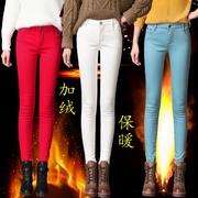 秋冬季加绒彩色女裤外穿糖果色加厚铅笔裤小脚打底靴裤牛仔长裤子