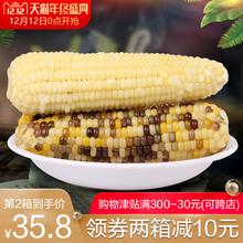 12日0点开抢露茵新鲜甜糯米玉米棒营养早餐粗粮白彩混搭10根
