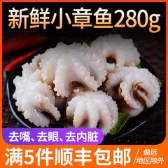 新鲜小八爪鱼280g 小章鱼 冷冻海鲜 火锅食材满5件