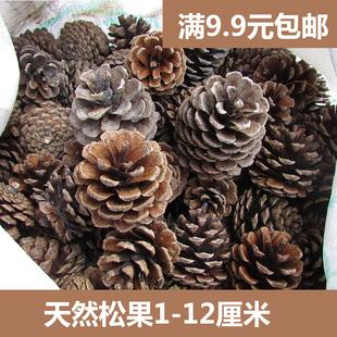 手工制作材料创意diy天然摆件松果松塔松子干花果实装饰树枝干枝